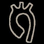 kardiologie-hannover-(1)