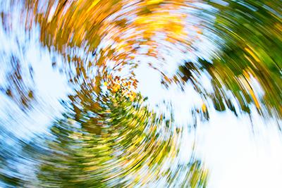 Bäume Ansicht beim Schwindel